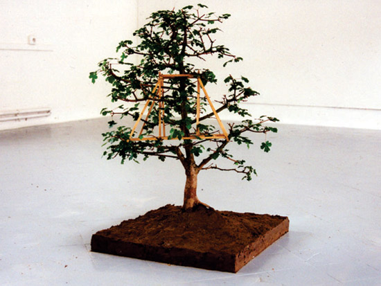 Maquette (érable champêtre) 1999